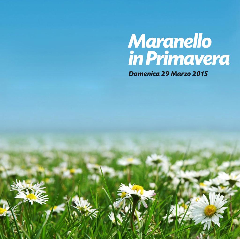 primaveramaranelloB