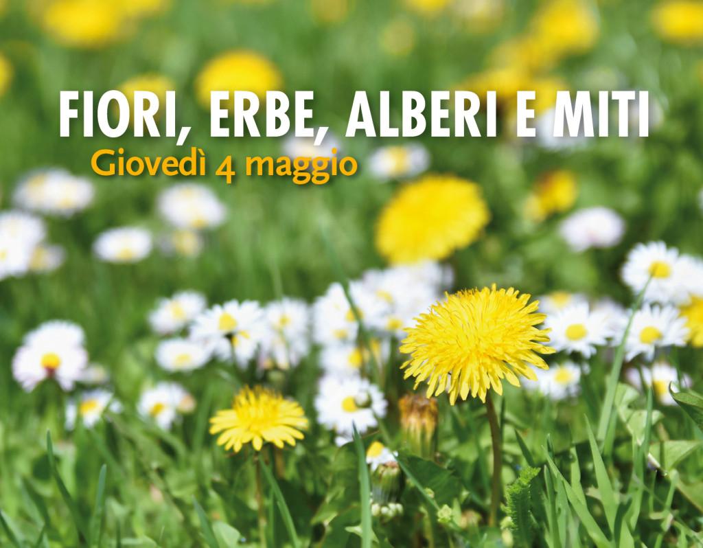 fiori erbe